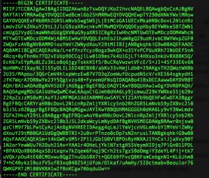SSL Public Key